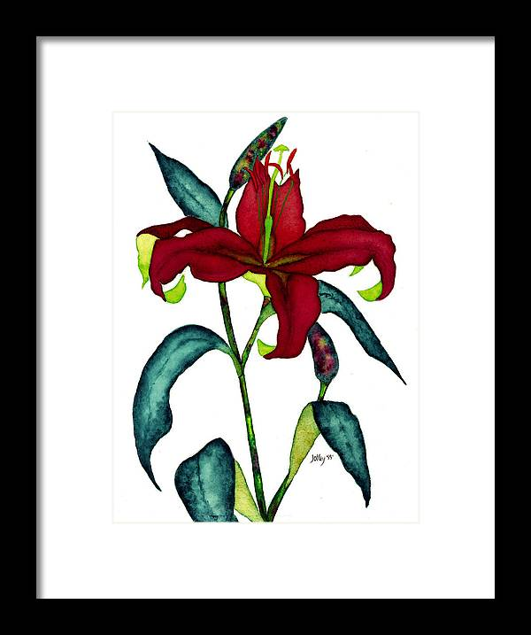 Watercolor Framed Print featuring the painting Red Lily by Stephanie Jolley