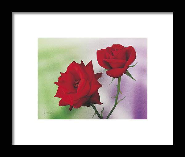 Roses Framed Print featuring the painting Red Mr. Lincoln Roses by Jan Baughman