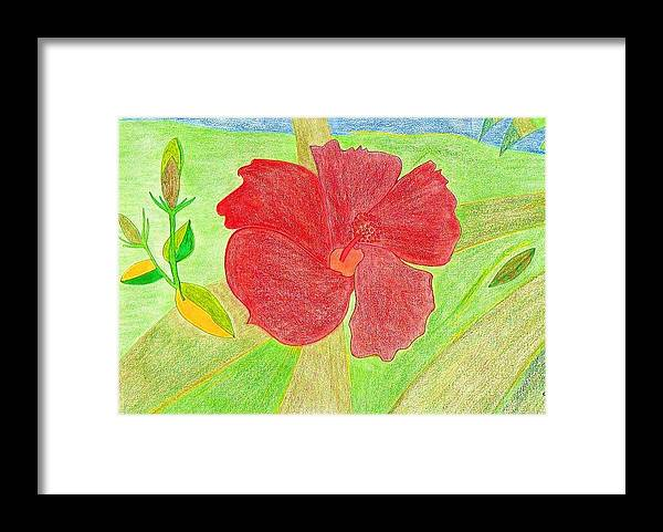 Red Flower Framed Print featuring the drawing Red Passion by Michael Puya