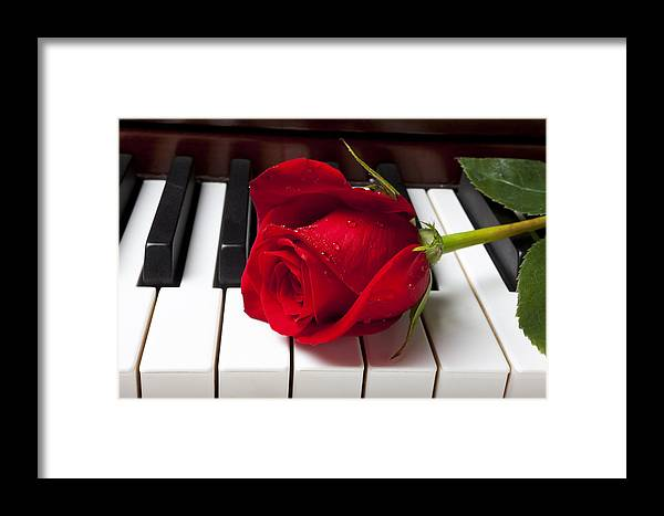 Red Rose Roses Framed Print featuring the photograph Red Rose On Piano Keys by Garry Gay