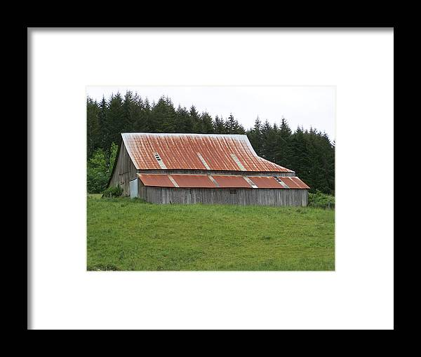 Barn Framed Print featuring the photograph Red Rusty Tin Roofed Old Barn Washington State by Laurie Kidd