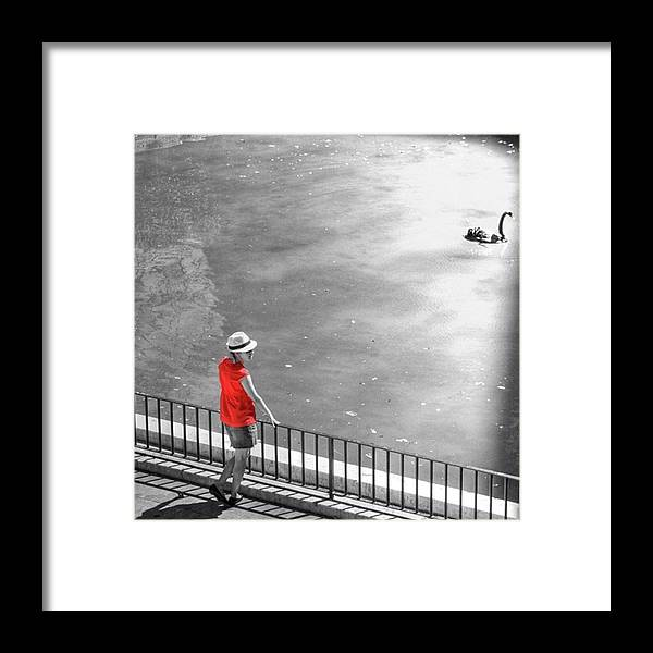 Palmademallorca Framed Print featuring the photograph Red Shirt, Black Swanla Seu, Palma De by John Edwards