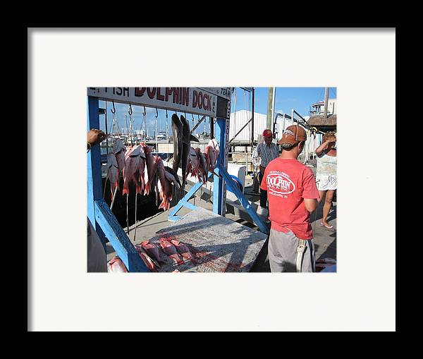 Island Framed Print featuring the photograph Red Snapper Catch by Wendell Baggett