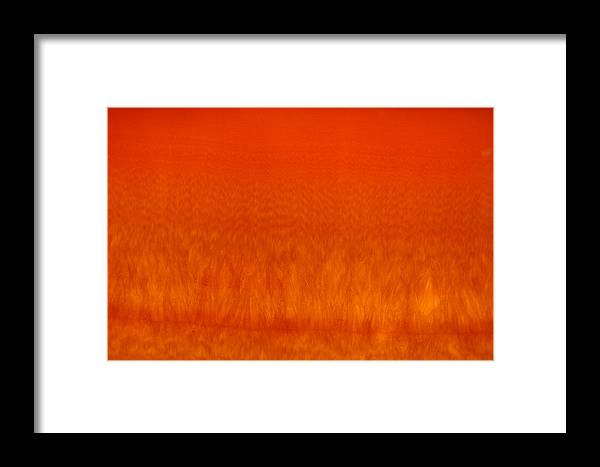 Framed Print featuring the photograph Red Stone 2 by Michael Raiman