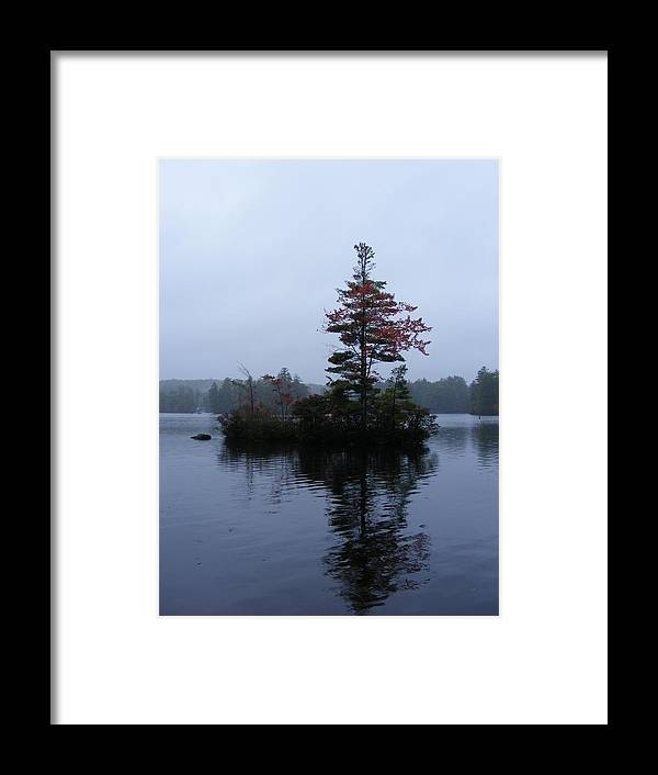 Tree Framed Print featuring the photograph Red Tree Island by Alison Heckard