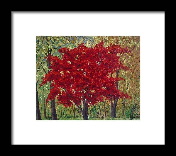 Impressionistic Framed Print featuring the painting Red Tree by Stan Hamilton II