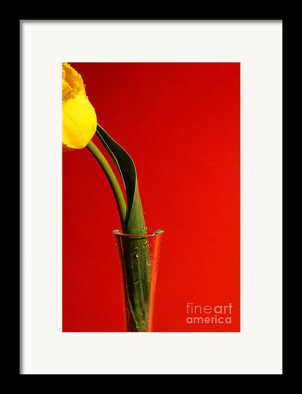 Red Framed Print featuring the photograph Red by Vadim Grabbe