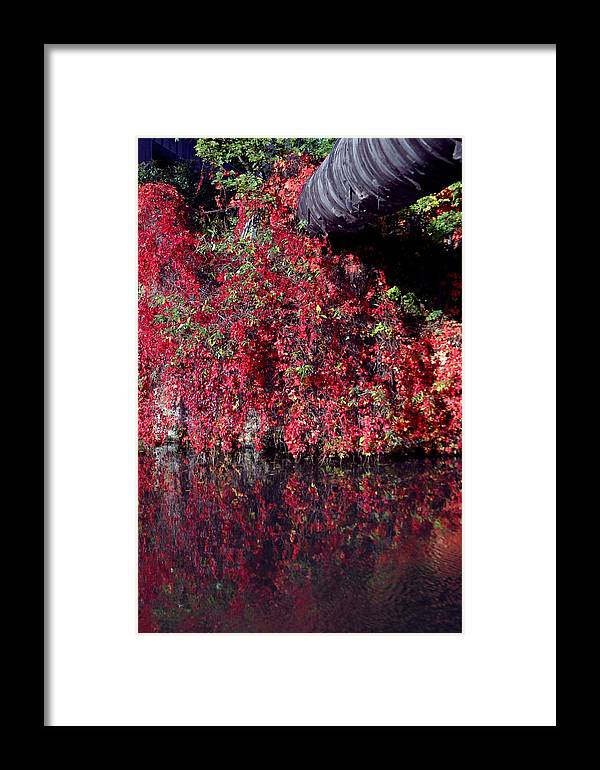 Jez C Self Framed Print featuring the photograph Red Waste by Jez C Self