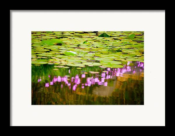 Floral Framed Print featuring the photograph Reflected Flowers And Lilies by Paul Kloschinsky