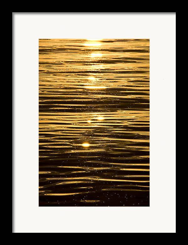 Framed Print featuring the photograph Reflection by JK Photography