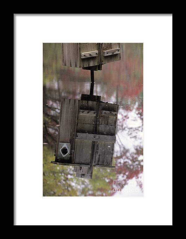 Wood Duck Framed Print featuring the photograph Reflection Of Wood Duck Box In Pond by Erin Paul Donovan