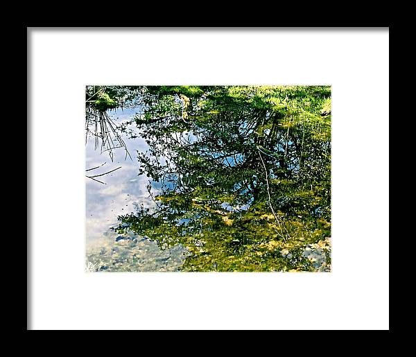 Refection Pool Framed Print featuring the photograph Reflection Pool by Debra   Vatalaro