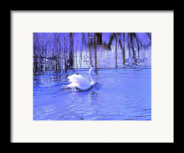 Landscape Framed Print featuring the photograph Reflections In Blue by Kendall Eutemey
