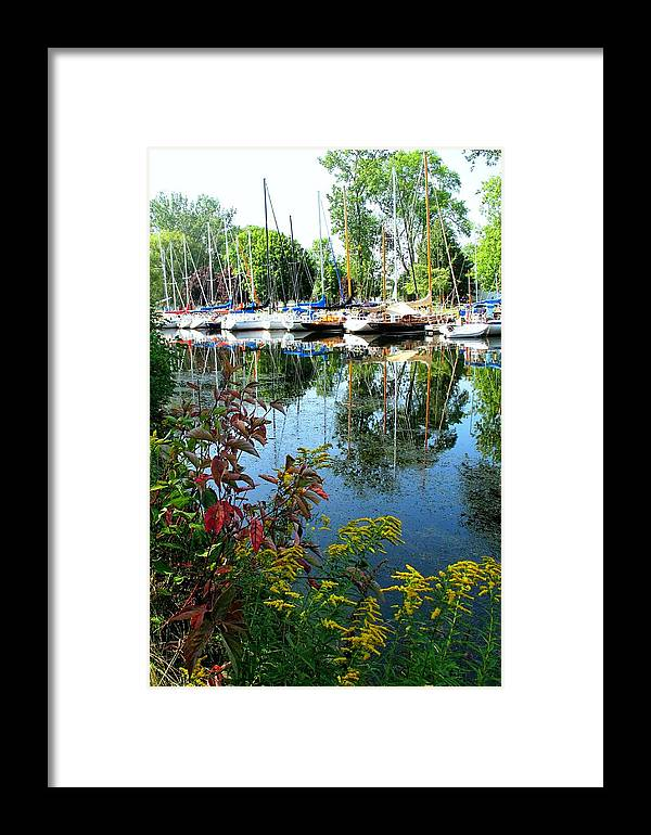 Flowers Framed Print featuring the photograph Reflections In The Pool by Ian MacDonald