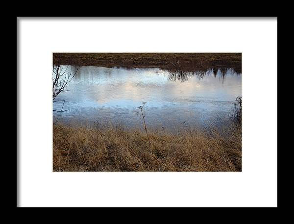 Nature Framed Print featuring the photograph Reflections by Marilynne Bull