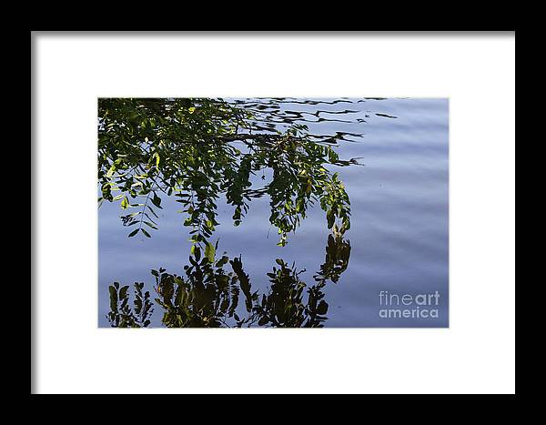 Tree Framed Print featuring the digital art Reflections Of Life by Jack Ader
