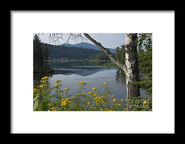 Landscape Framed Print featuring the photograph Reflections Of Summer by Idaho Scenic Images Linda Lantzy