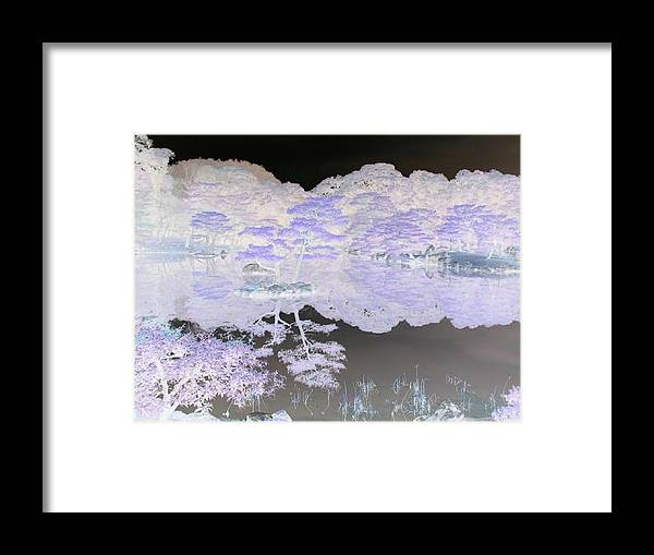 Reflection Framed Print featuring the photograph Reflections On A Surreal Pond by Curtis Schauer