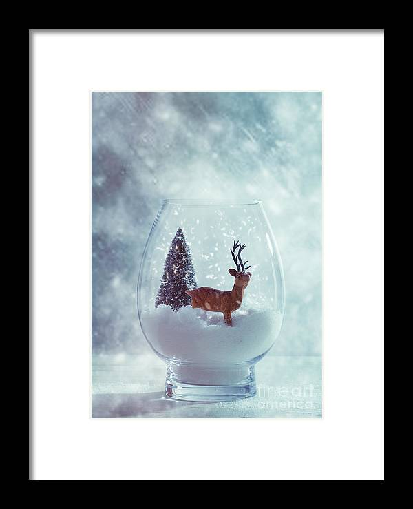 Christmas Framed Print featuring the photograph Reindeer In Glass Snow Globe by Amanda Elwell