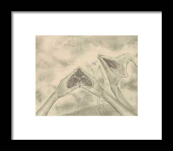 Birds Framed Print featuring the drawing Release by Julianna Ziegler