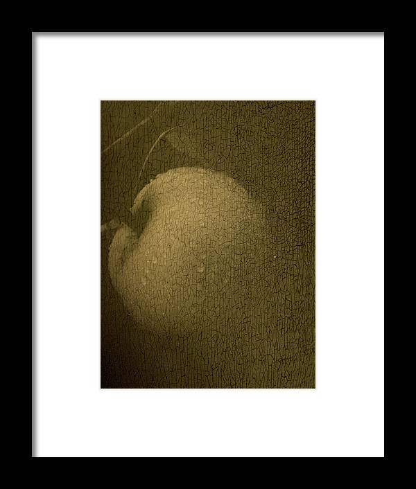 Texture Framed Print featuring the photograph Rembrandts Fruit by Tingy Wende