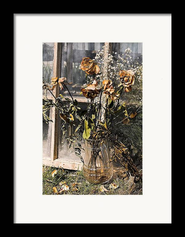 Windows Framed Print featuring the photograph Remnants Of The Past by Linda McRae
