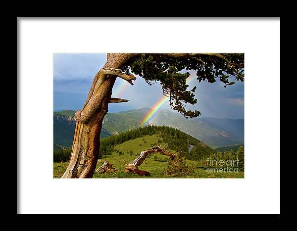 Alpine Framed Print featuring the photograph Repeating Arches by Crystal Garner