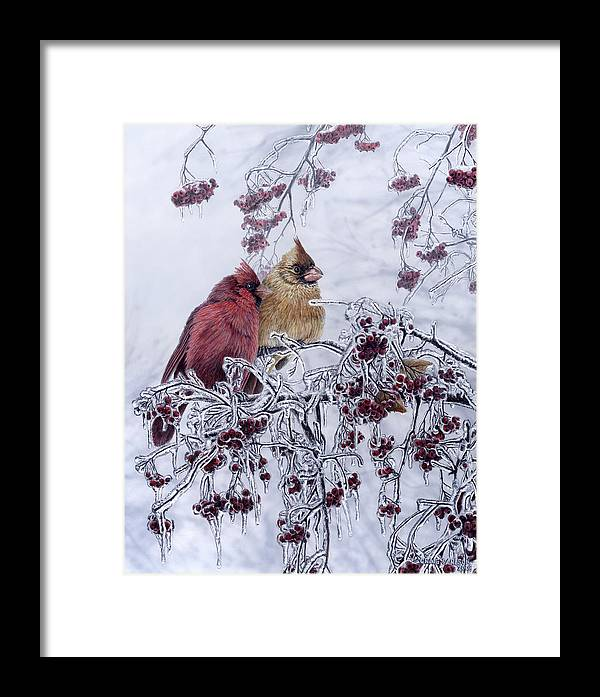 Cardinal Framed Print featuring the painting Resilient Reds - Northern Cardinals by Craig Carlson