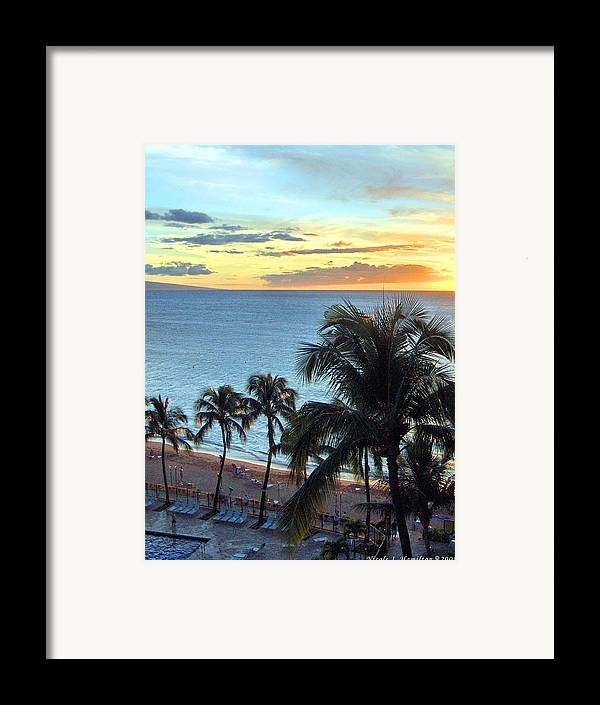 Palm Tree Framed Print featuring the photograph Resort Sunset by Nicole I Hamilton