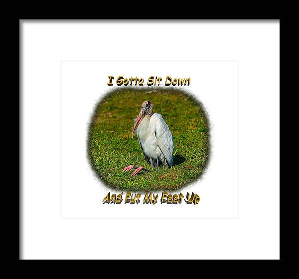 Shirts Framed Print featuring the photograph Resting Woodstork by John M Bailey