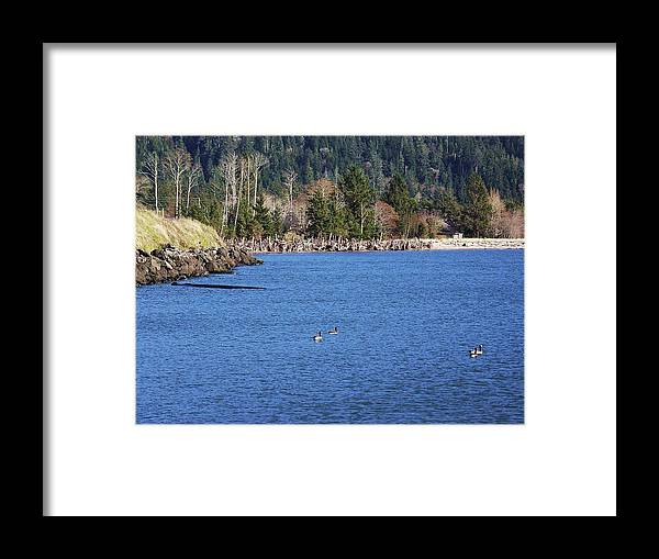 Bay Framed Print featuring the photograph Return To The Bay by Julie Rauscher