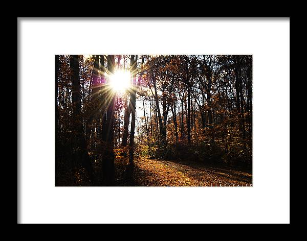 47images Framed Print featuring the photograph Revealed II by Jonathan Ellis Keys