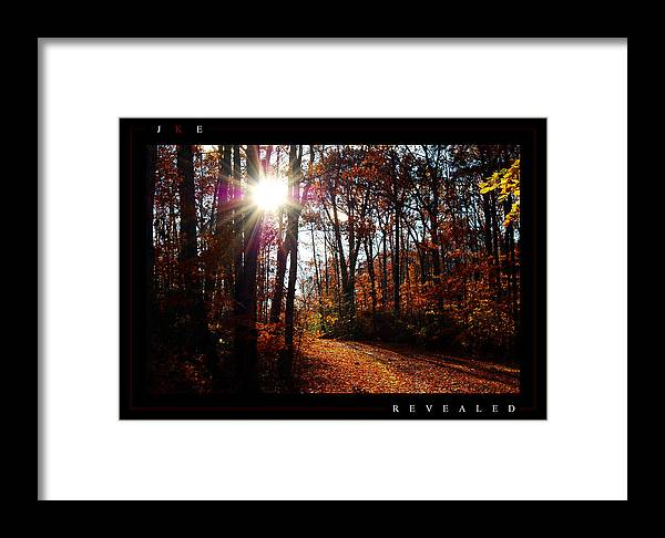 Forest Framed Print featuring the photograph Revealed by Jonathan Ellis Keys