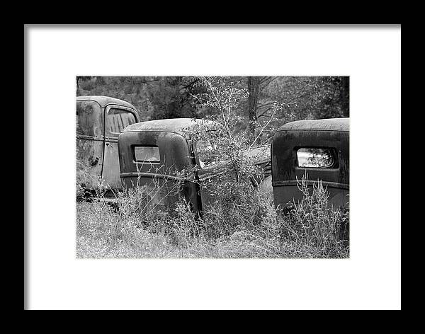 Black And White Photography Framed Print featuring the photograph Review by Wayne Denmark