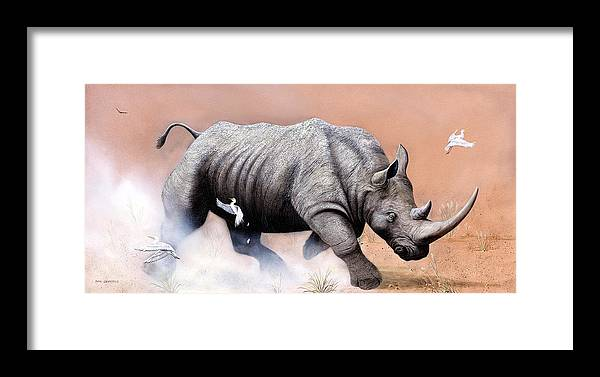 Wildlife Framed Print featuring the painting Rhino by Don Griffiths