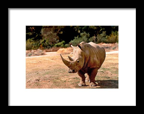 Animal Framed Print featuring the painting Rhino by Steve Karol