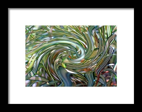 Ribbon Framed Print featuring the photograph Ribbon Grass 2 by Steve Ohlsen