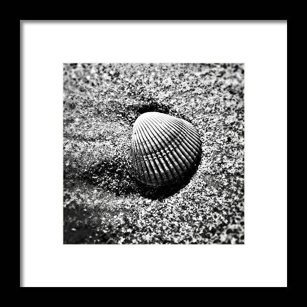 Sand Framed Print featuring the photograph Ridges by Joanne Riske