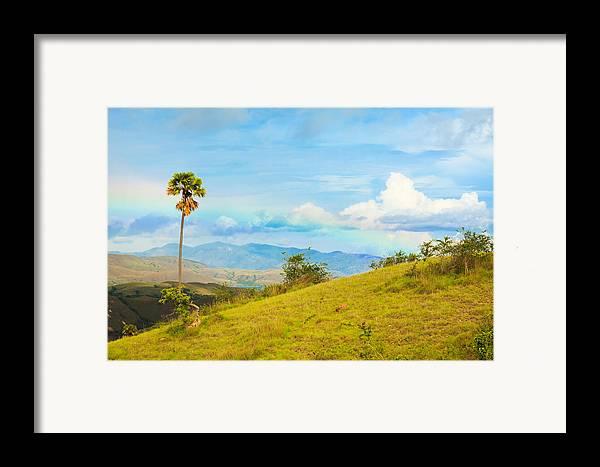 Summer Framed Print featuring the photograph Rinca Island. by MotHaiBaPhoto Prints