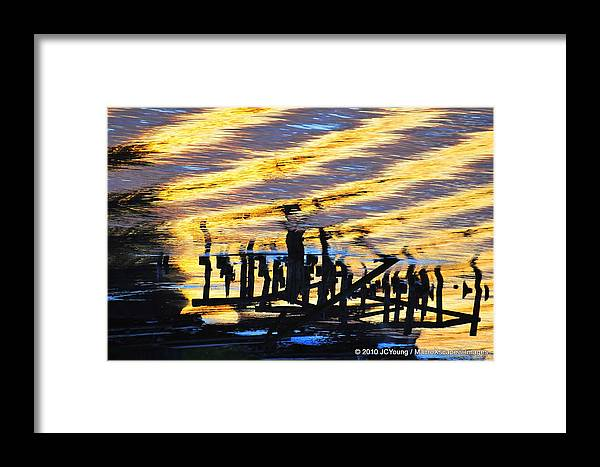 Ripple Framed Print featuring the photograph Ripple Effects Of The Day by JCYoung MacroXscape