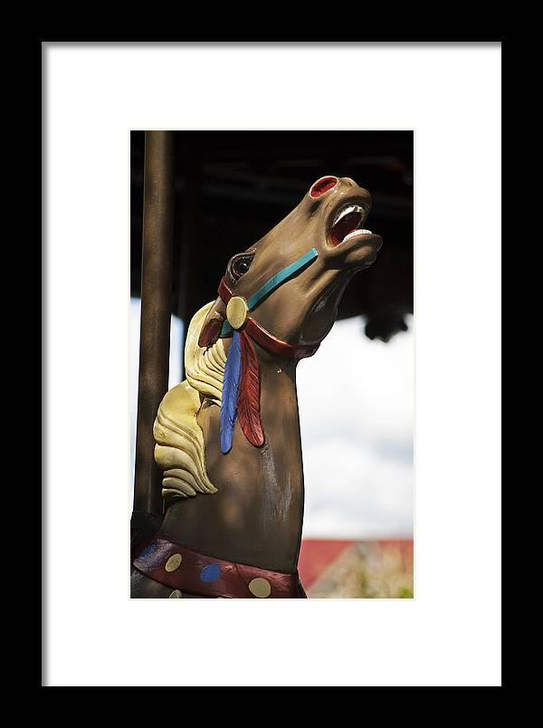 Carousel Framed Print featuring the photograph Rise Up by Elsa Marie Santoro