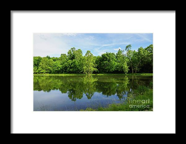America Framed Print featuring the photograph Ritter Springs Pond by Jennifer White
