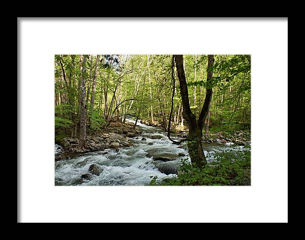 River Framed Print featuring the photograph River At Greenbrier by Sandy Keeton