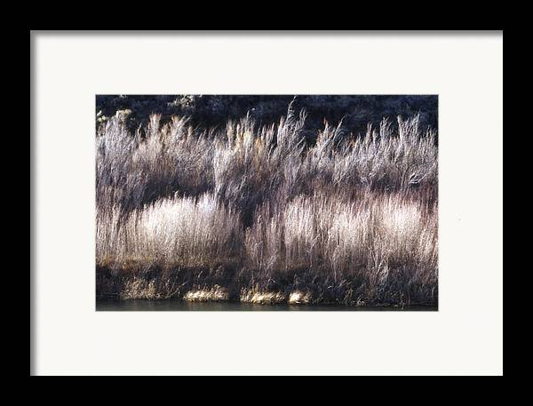 Landscape Framed Print featuring the photograph River Sage by Lynard Stroud