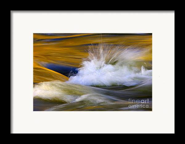 River Framed Print featuring the photograph River by Silke Magino