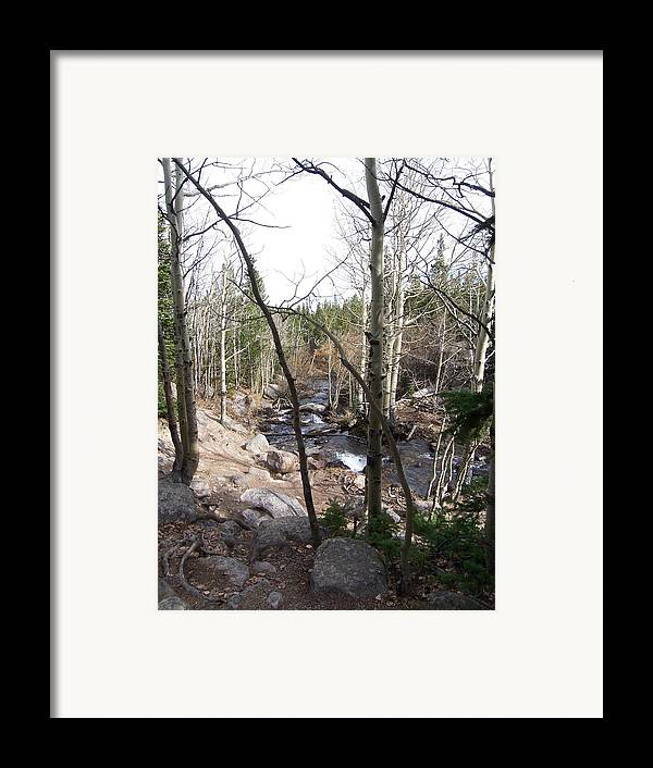 Landscape Framed Print featuring the photograph River Through The Trees by Lisa Gabrius