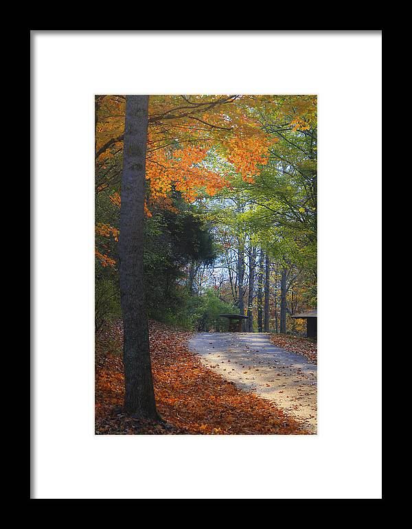 Cabin Framed Print featuring the photograph Road To Cabin 2 by Teresa Mucha
