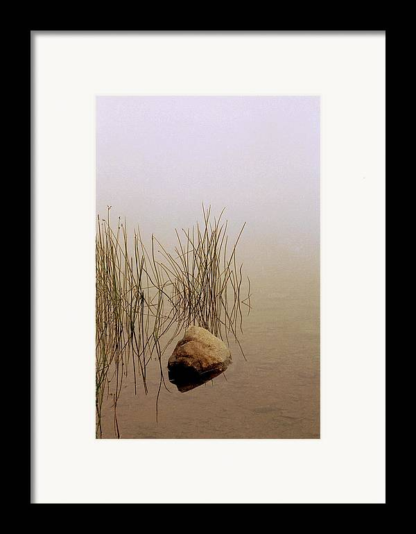Calm Framed Print featuring the photograph Rock And Reeds On Foggy Morning by Roger Soule