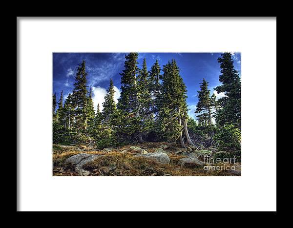 Nature Framed Print featuring the photograph Rock Garden by Pete Hellmann