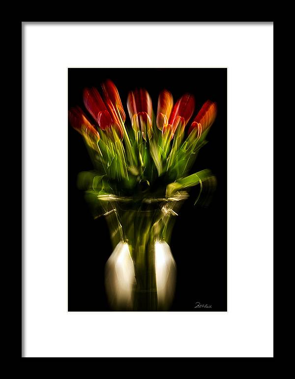 Photography Framed Print featuring the photograph Rocket Propelled Tulips by Frederic A Reinecke